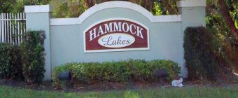 HammockLakesHomesforSale00