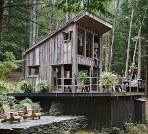 Tiny-New-York-Cabin-in-the-Woods-1