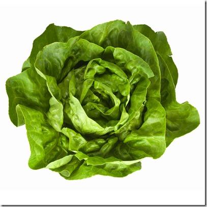 butter-lettuce1