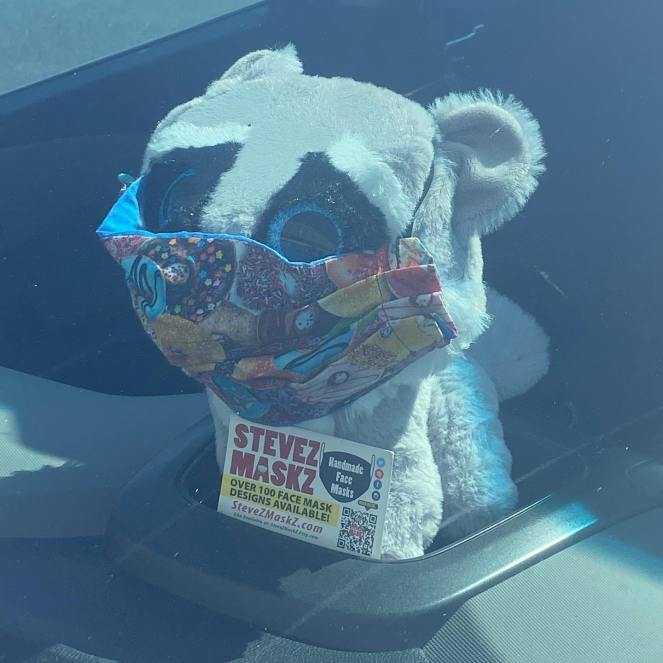 Meet All of the Lovies - These lovies, stuffed animals are the sales people for SteveZ MaskZ. When we go out and about and shopping for fabric and supplies they stay in the car with a business card and promote SteveZ MaskZ. (Meet Rosco)
