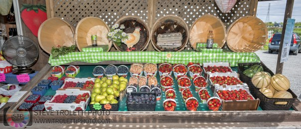 Comptoir des fruits - Les Jardins Provost - 1381, chemin du Général-Vanier Boucherville, QC J4B 5E4 - (450) 655-3657