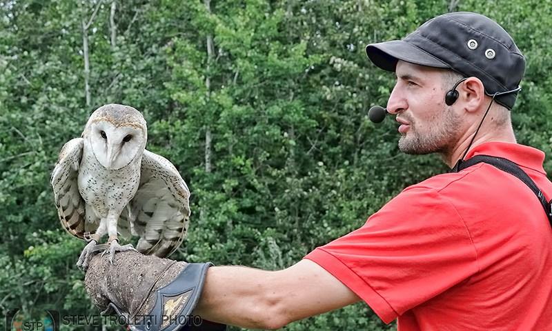 UQROP – l'Union Québécoise de Réhabilitation des Oiseaux de Proie