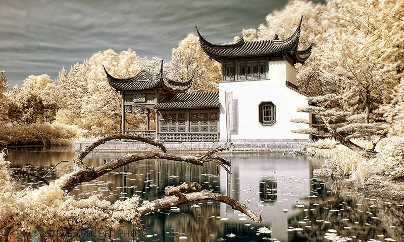 The Gift Shop at the Chinese Garden – IR