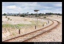Stork nests and rail