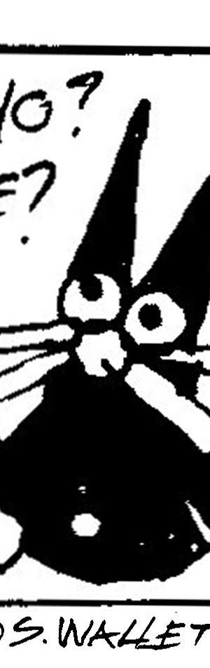 mother's day 2013 cat cartoon detail steve wallet architect