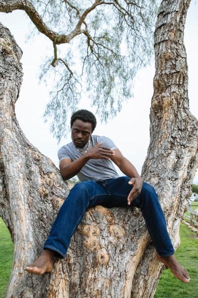 Photo of a black man, gustaff besungu in a tree