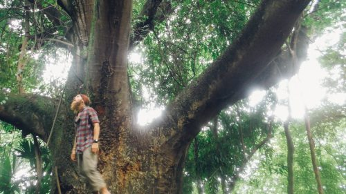 Photo of Stevie Vagabond in the jungles of Central America where he wrote Humble Miles.