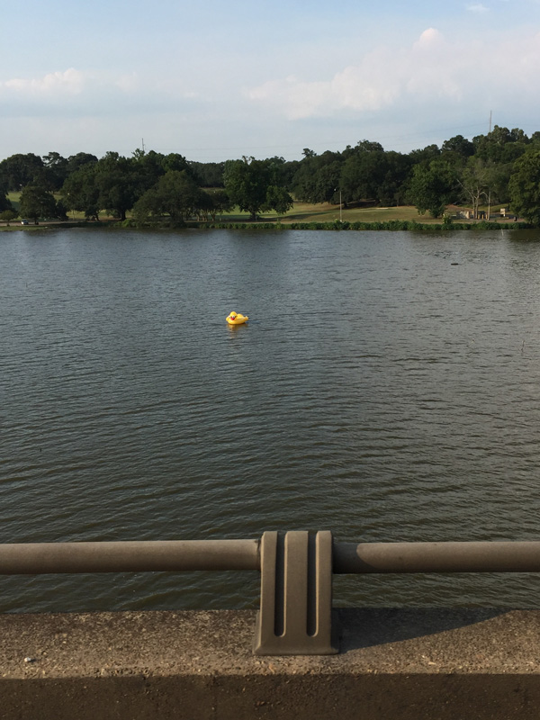 Photo of an inflatable duck in Mississippi