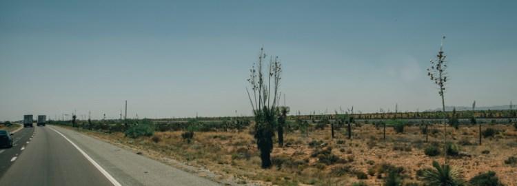 Roadside leaving New Mexico towards Arizona.