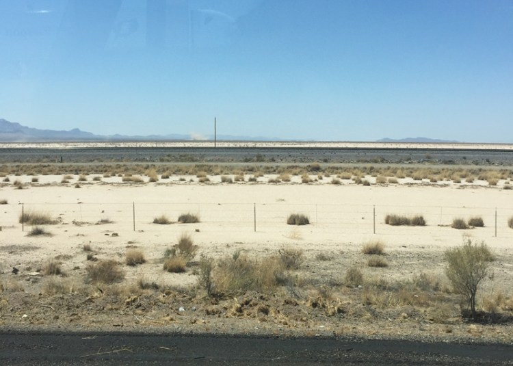 New Mexico desert landscape.