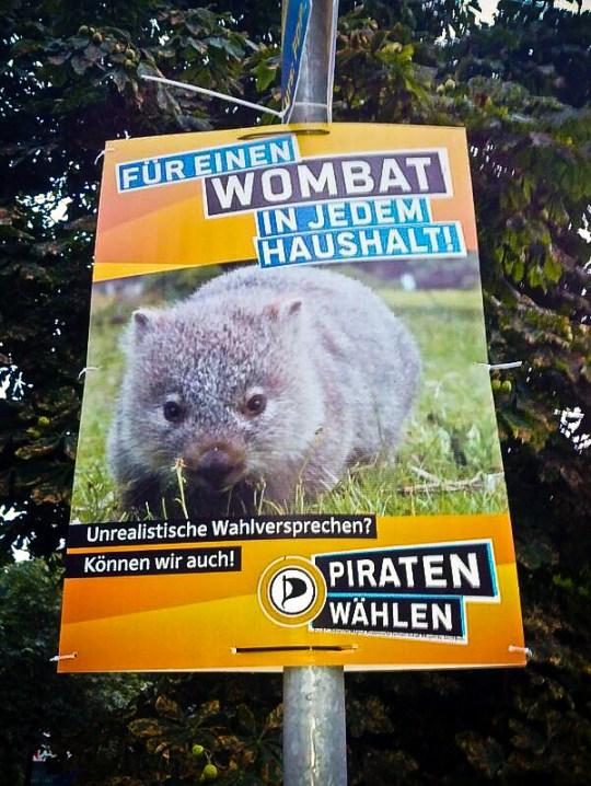 wombat-1-von-1