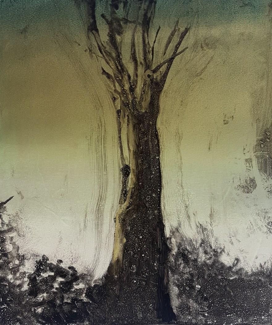 Stump #138 (Ash Dieback I), Monoprint, 36cm x 30cm, £120