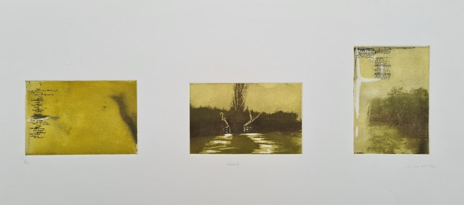 Untitled (#5 [Richmond Park], postgrad '94), Photoetching, AP, NFS