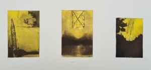 Untitled (#7 [cranes], postgrad '94), Photoetching, AP, NFS