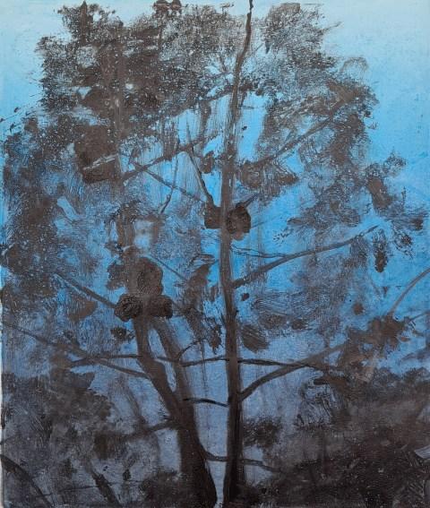 Ojai #31, Monoprint, 30cm x 35cm