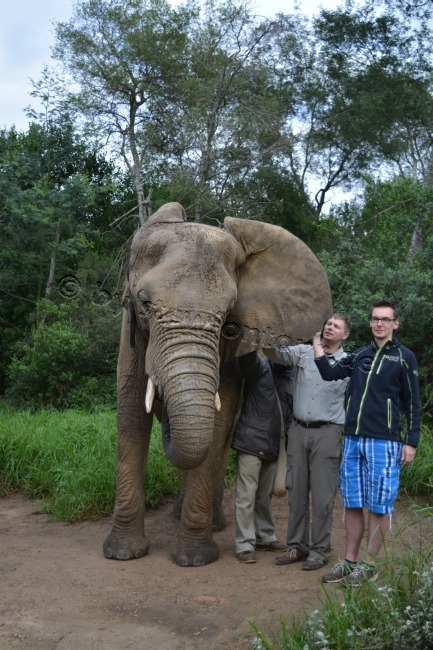 stewiontour_Südafrika2015 (174)
