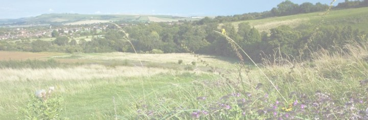 view of downland