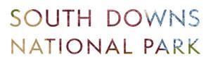 sdt-logo