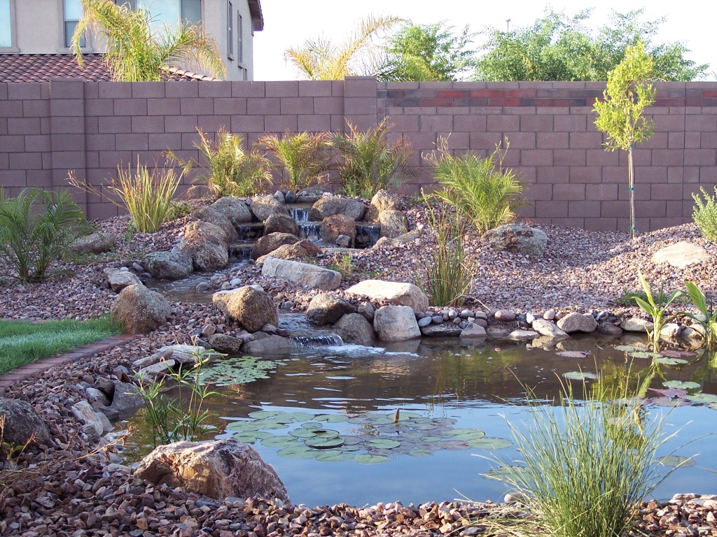 Plants Around Fountains