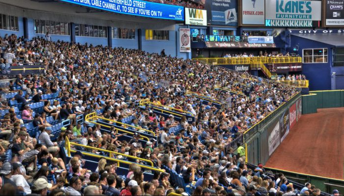 Tampa Bay Rays fans at the game