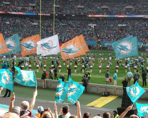 Miami Dolphins cheerleaders flags fans