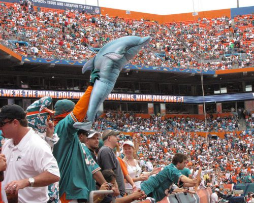 fans cheering at Miami Dolphins game
