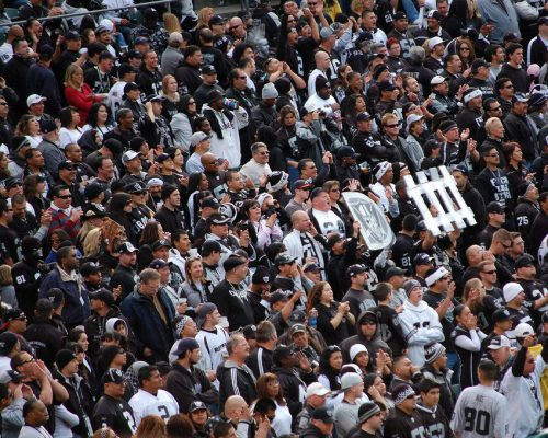 Oakland Raiders fans cheering at the game