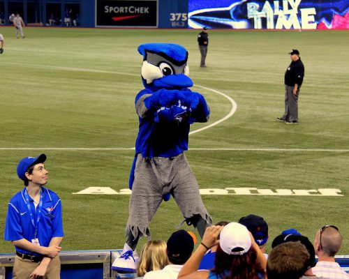 Toronto Blue Jays mascot Ace at the game in Rogers Center