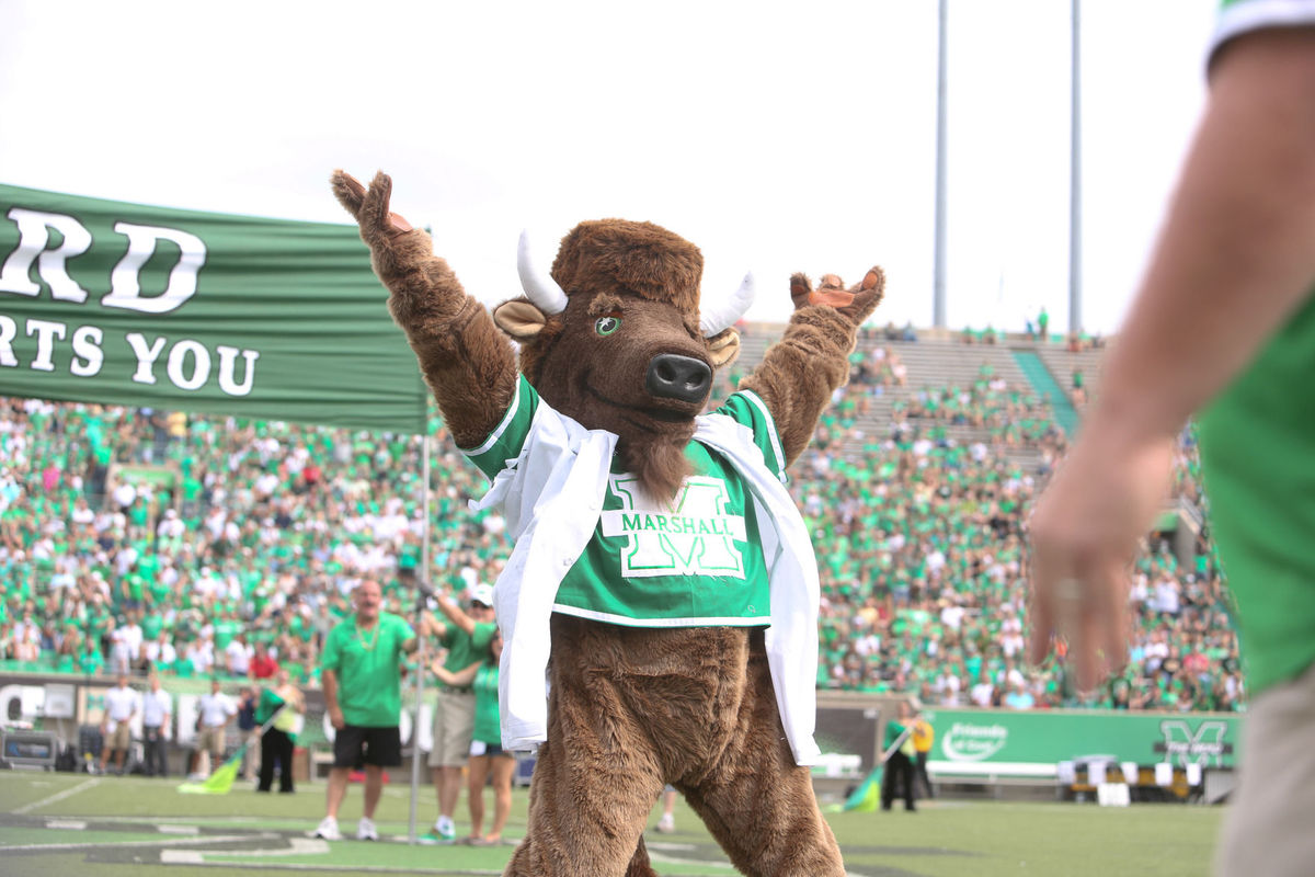 Marshall Thundering Herd mascot Marco the Buffalo