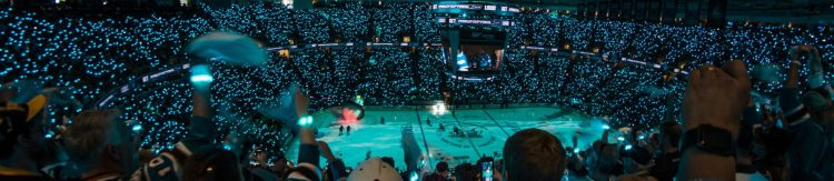 San Jose Sharks game fans Stanley Cup Finals