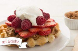 Waffle Love – Provo