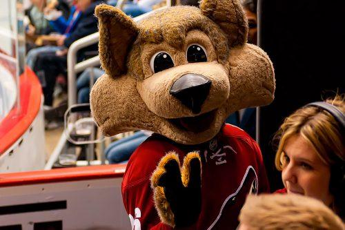 Arizona Coyotes mascot Howler the Coyote