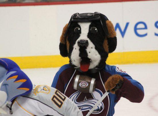 Colorado Avalanche mascot Bernie