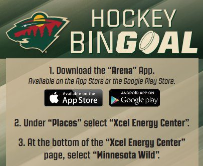 Hockey Bingoal Minnesota Wild