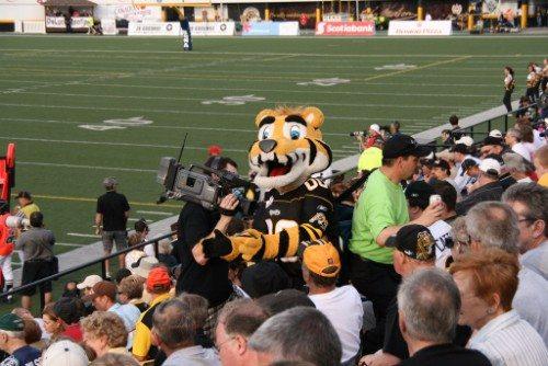 Hamilton Tiger-Cats Mascot