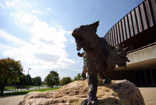 Weber State wildcats statue