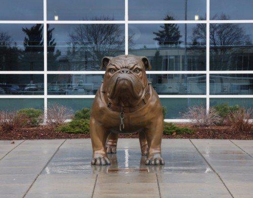 Gonzaga Bronze Bulldog State