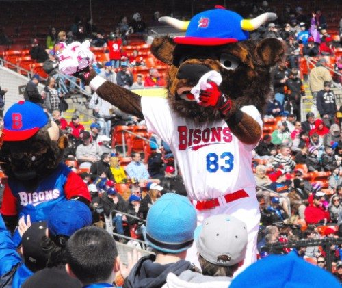 Buffalo Bisons mascot Buster T Bison