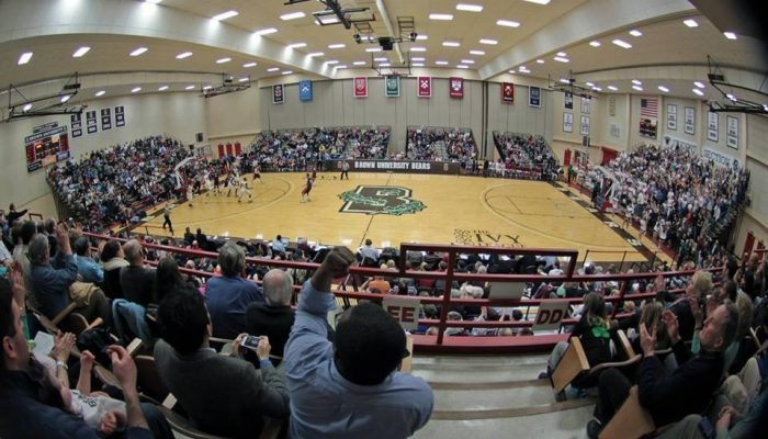 Brown Bears Pizzitola Sports Center