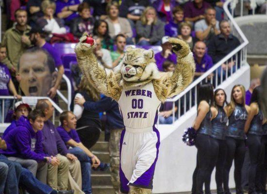 Weber State Wildcats basketball mascot Waldo Wildcat