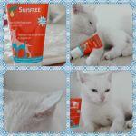 Dermosent Sunfree voor je witte kat of gekleurde kat met witte oren