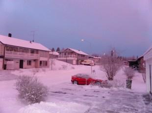 Björkbacken fr trädgården 7 jan 2016