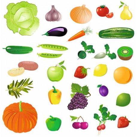 autocollant legume fruit planche