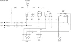 2005 Freightliner Ac Wiring Diagram | Fuse Box And Wiring