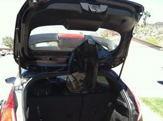 Strip back glass Fiesta