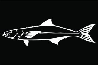 Cobia Profile Decal