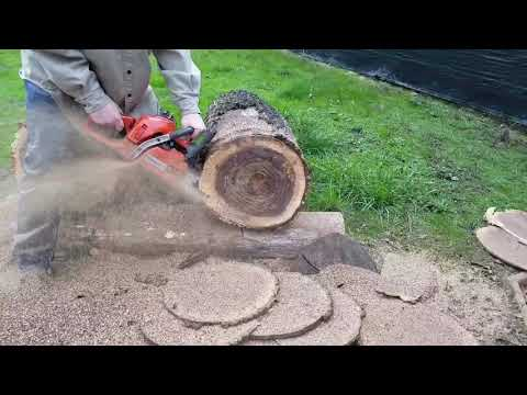 Husqvarna 359 before and after, vs ported stihl 044