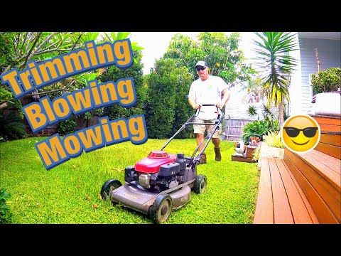 Honda Lawn Mowing Stihl Trimming and Blowing Pittwater Mowing