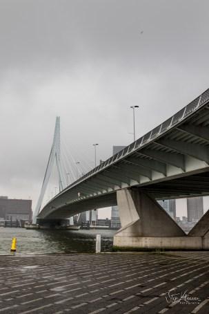 SKL_Rotterdam-2