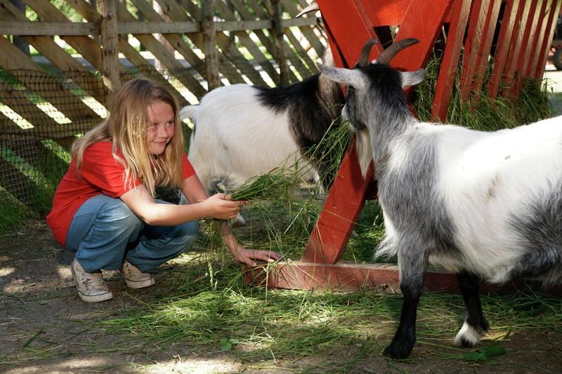 Parken ligger på Trones og består av en dyrepark og familiepark med aktiviteter for alle aldere.